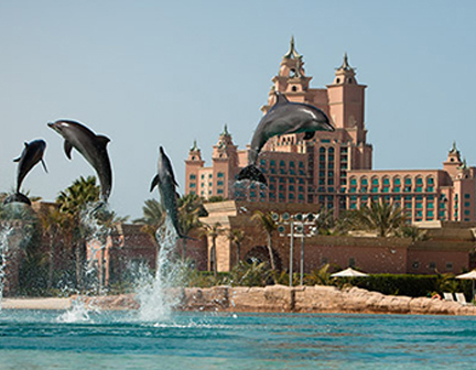 Dubai Tourism Waterpark Holidays